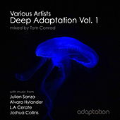 Deep Adaptation, Vol. 1 by Various Artists