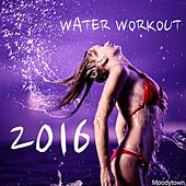 Water Workout 2016 by Various Artists