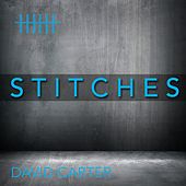 Stitches von David Carter