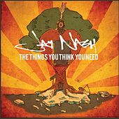 The Things You Think You Need de Jay Nash