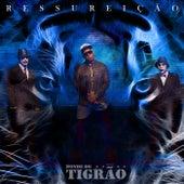Ressurreição by Bonde do Tigrão