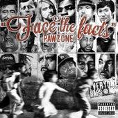 Face The Facts de Pawz One