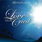 When Love First Cried by Sonicflood