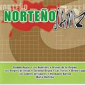 Norteño Jamz by Various Artists