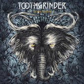 Nocturnal Masquerade by Toothgrinder