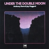 Under the Double Moon by Jay Hoggard