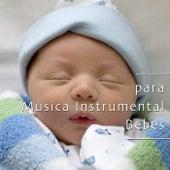Musica para Bebe Dormir: Musica Instrumental para Bebes de Various Artists