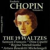 Chopin, Vol. 6 : The 19 Waltzes (Award Winners) de Various Artists
