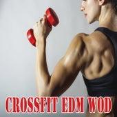 Workout - 30 Min = Danyal 1e Helft Van Zijn Mix Crossfit EDM Wod & DJ Mix von Various Artists