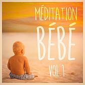 Méditation pour bébé, Vol. 1 (Musique douce et paisible pour bébé) de Various Artists