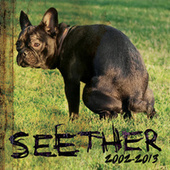 Seether: 2002-2013 by Seether