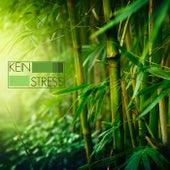 Kein Stress - Meditationsmusik mit Meeresrauschen und Entspannungsmusik für Progressive Muskelentspannung und Autogenes Training by Entspannungsmusik Akademie