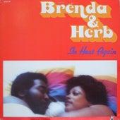 In Heat Again by Brenda