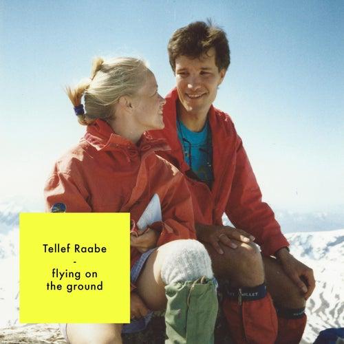 Flying on the Ground von Tellef Raabe