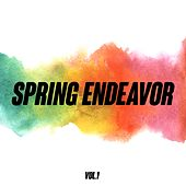 Spring Endeavor, Vol. 1 by Various Artists