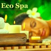 Eco Spa: Música Relajante para Baño Turco, Sauna, Masaje Shiatsu con Aceites Esenciales y Aromaterapia – Sonidos de la Naturaleza para un Dia de Relax and Tone, Aqua Spa para Parejas de Musica para Dormir