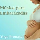 Música para Embarazadas: Yoga Prenatal - Sonidos de la Naturaleza para Niños, Ejercicios de Gimnasia, Meditaciòn y Pilates para Estimular Recien Nacidos de Musica para Dormir