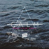 Calm (Robotlove Remix) by Famous for a Century