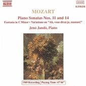 Piano Sonatas / Fantasia / Variations de Wolfgang Amadeus Mozart
