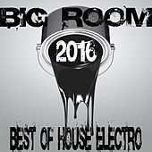 Big Room 2016 (Best of House Electro) by Various Artists