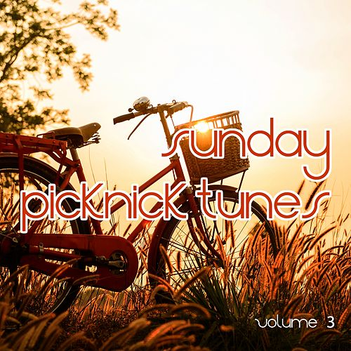 Sunday Picknick Tunes, Vol. 3 (Smooth Weekend Music) by Various Artists