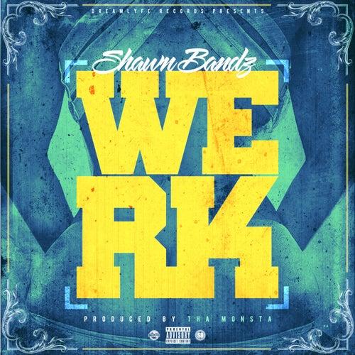 Werk - Single by Shawn Bandz
