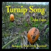Turnip Song by John Oates