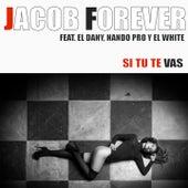 Si Tu Te Vas von Jacob Forever