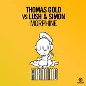 Morphine von Thomas Gold