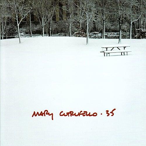 35 by Mary Cutrufello