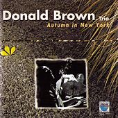 Autumn in New York by Donald Brown