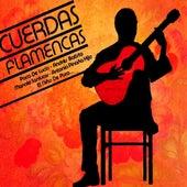 Cuerdas Flamencas de Various Artists