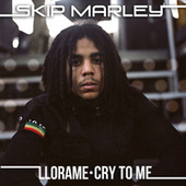 Llora Me (Cry To Me) de Skip Marley