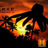 The Best of R.I.B. by The Rib