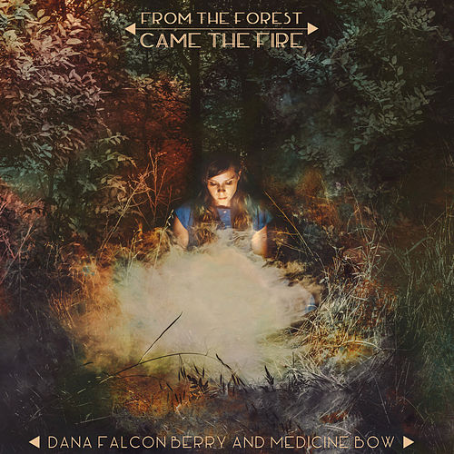 From the Forest Came the Fire by Dana Falconberry