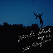 Boys Life (Wild Nothing Remix) by Small Black