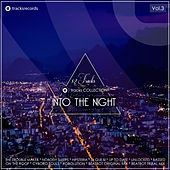 Into the Night, Vol. 3 by Various Artists