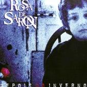 Depois do Inverno de Rosa de Saron