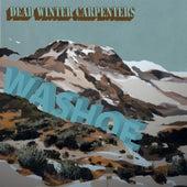 Washoe by Dead Winter Carpenters