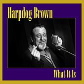 What It Is by Harpdog Brown