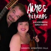 Aires Gitanos by Sergi Vicente