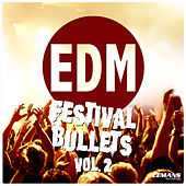 EDM Festival Bullets, Vol. 2 de Various Artists