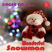 Wonderful Snowman by Singer Dr. B...