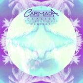 Realise (feat. Noah Slee) (Remixes) by Carmada