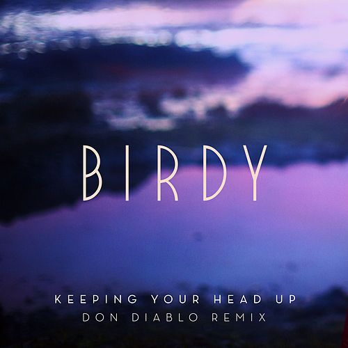 Keeping Your Head Up Don Diablo Remix Van Birdy Napster