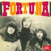 Fortuna de Fortuna