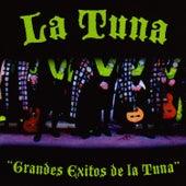Grandes Exitos De La Tuna von Tuna