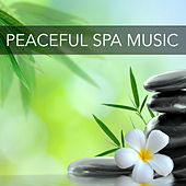 Peaceful Spa Music – New Age Spiritual Songs for Relaxation and Recreation, Music for Massages, Spa Treatments and Face Mask de Reiki Music
