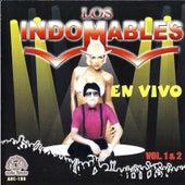 En Vivo by Los Indomables