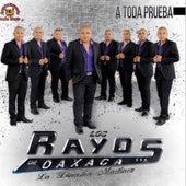 A Toda Prueba by Los Rayos De Oaxaca
